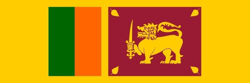 Thé du Sri Lanka - Ceylan